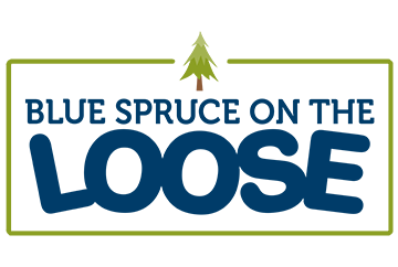 Camp Blue Spruce on the Loose Logo